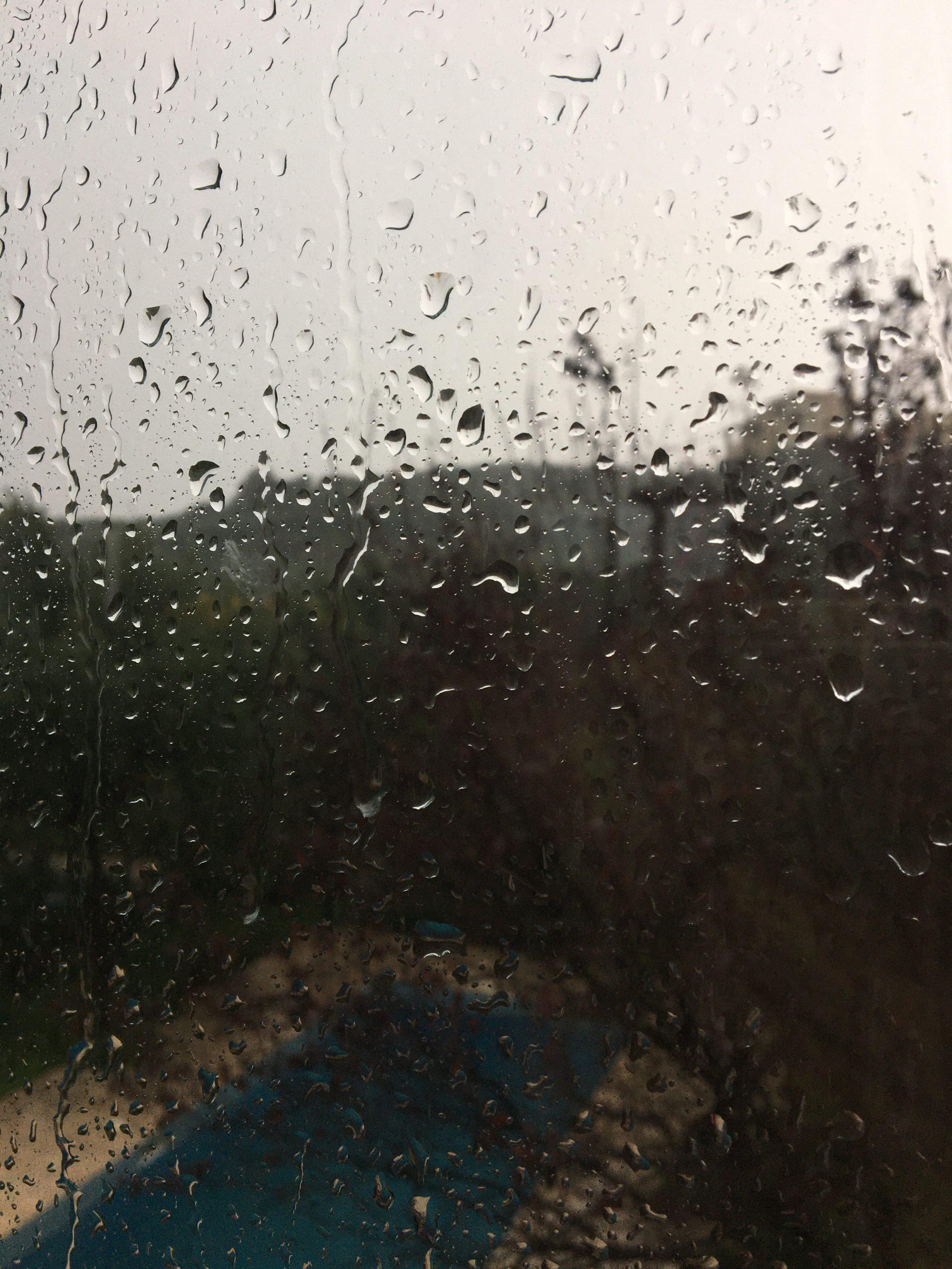 deszczowa kreta