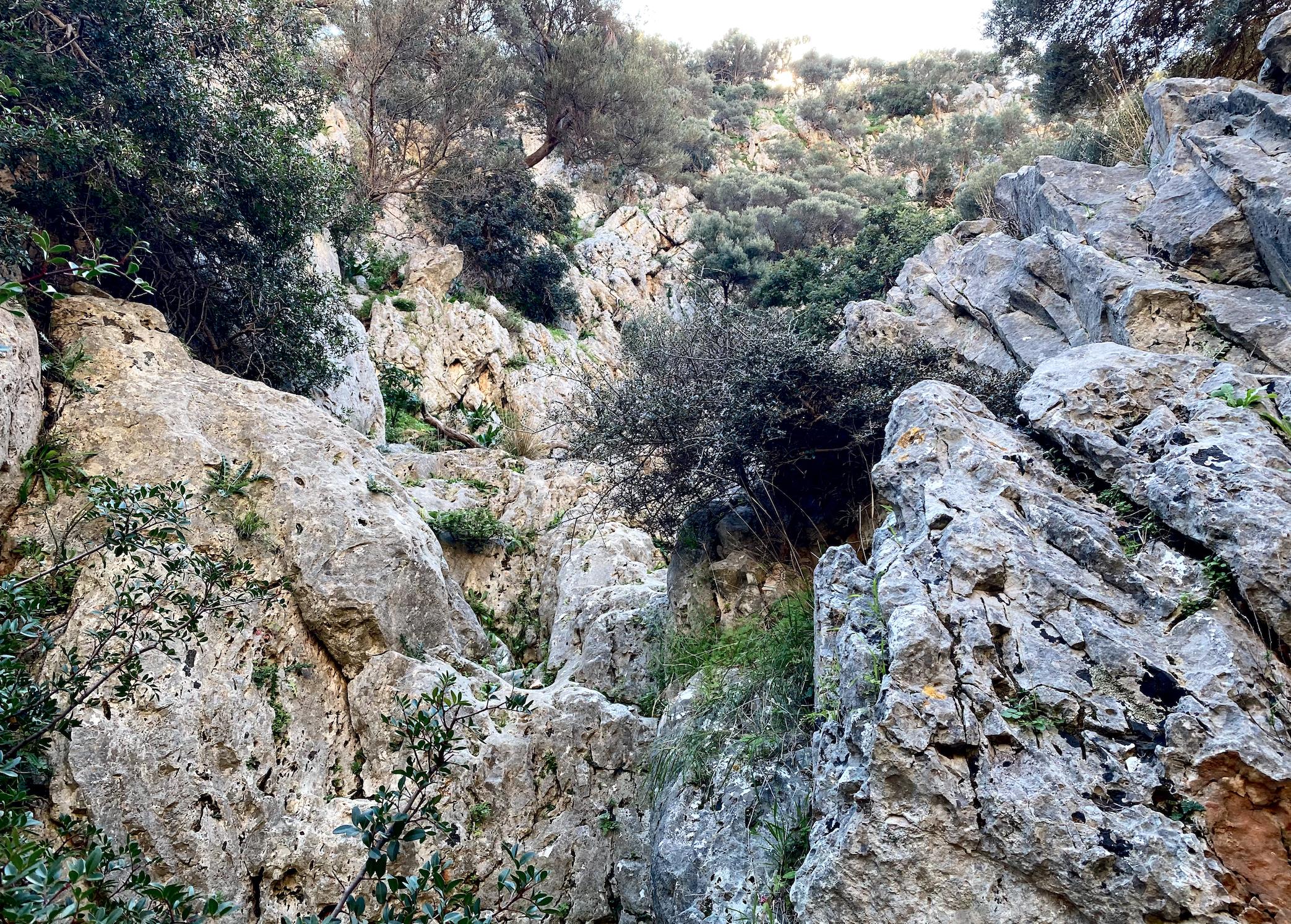 Wąwóz Katholiko Kreta