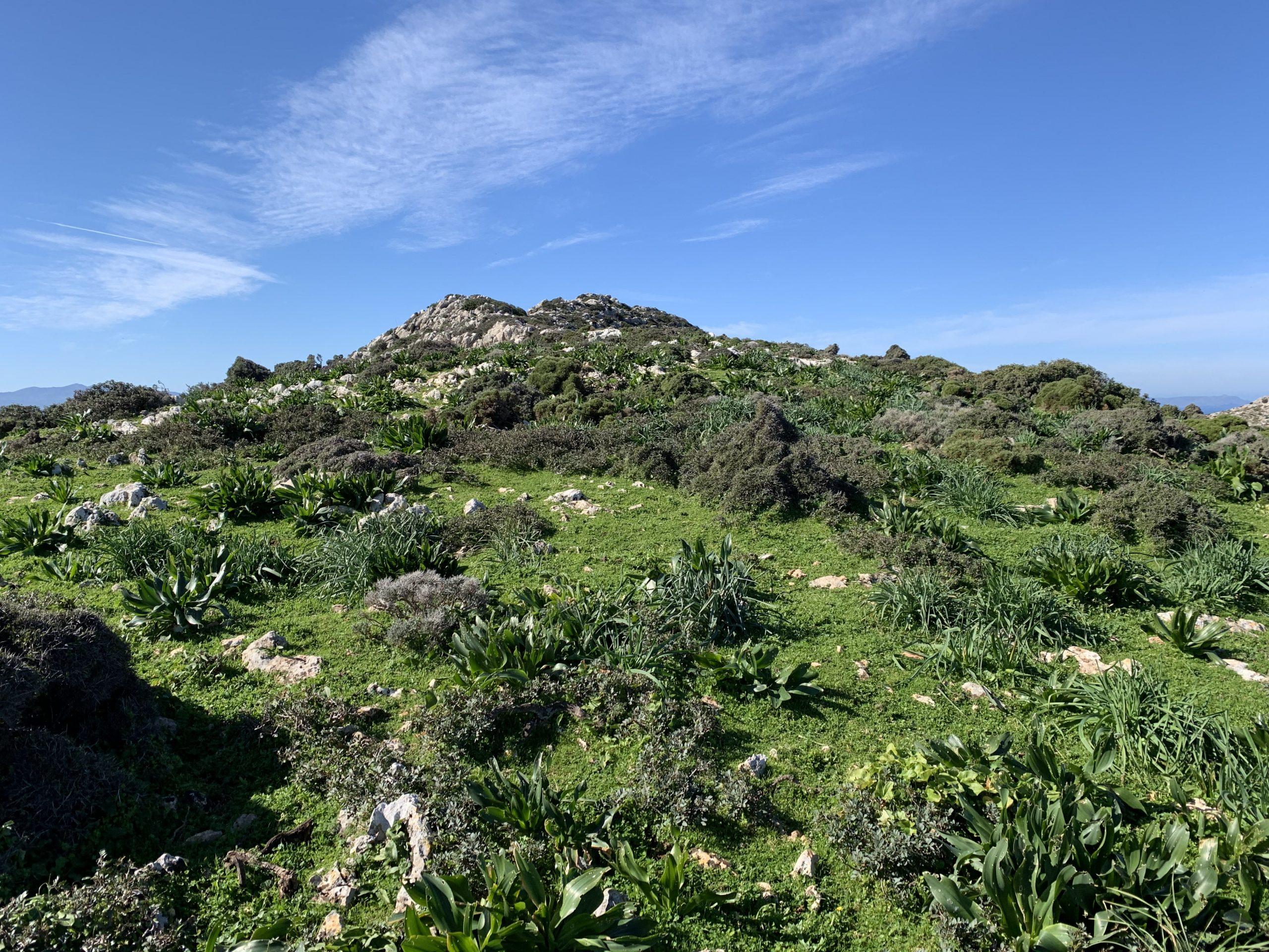 góra Vradies